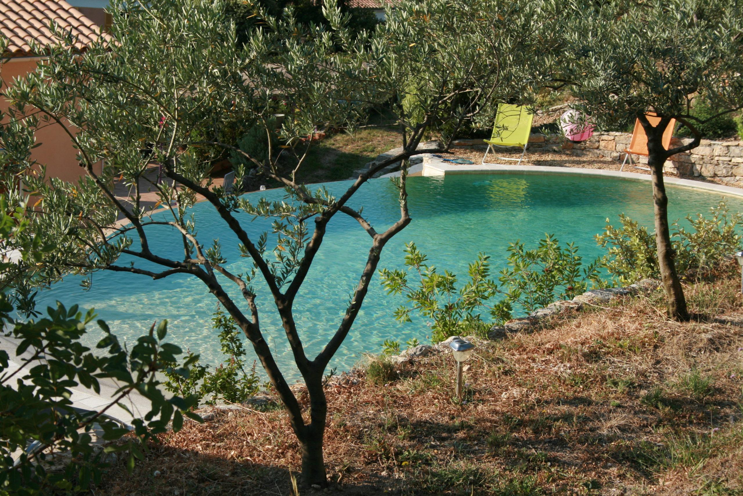 Dracénie Provence Verdon Agglomération - La Roque