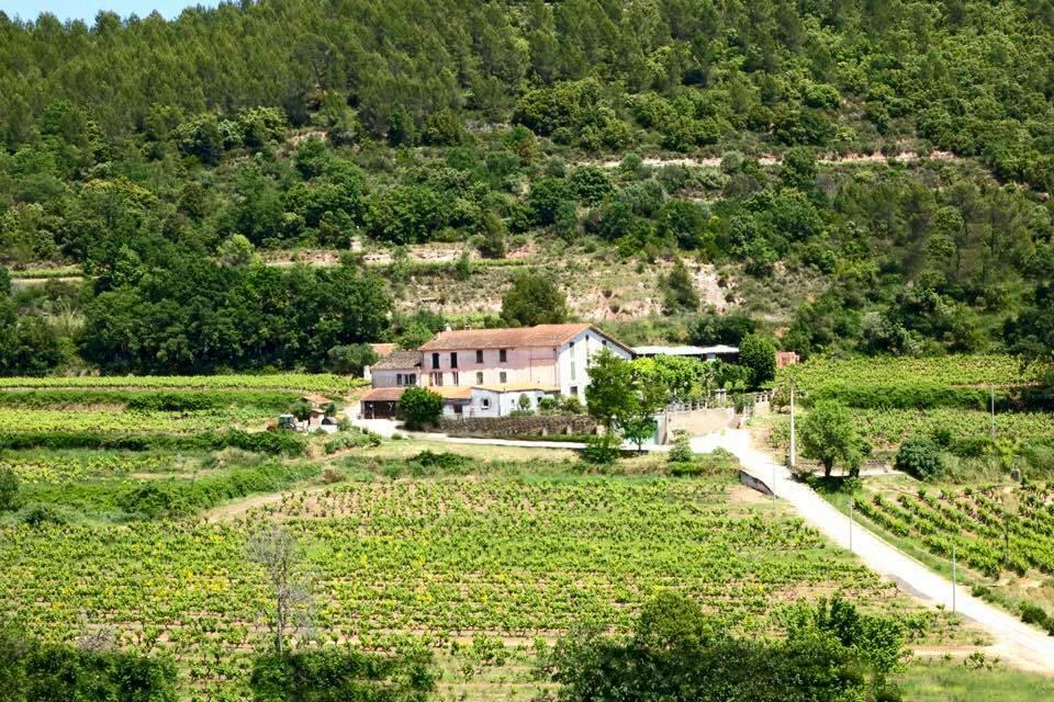 Dracénie Provence Verdon Agglomération - DOMAINE VALETTE