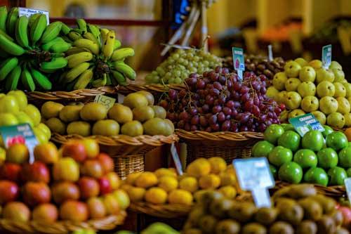Dracénie Provence Verdon Agglomération - Commerces